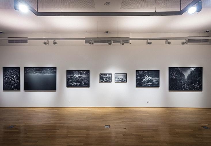 """Exposition """"Rethinking Nature"""" © Cercle Cité, photo: Mike Zenari"""