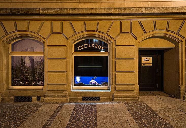 CeCiL's Box by Mary-Audrey Ramirez © Cercle Cité, photo: Mike Zenari